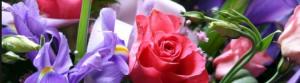 Floreali- famiglie olfattive - Il diario dei profumi